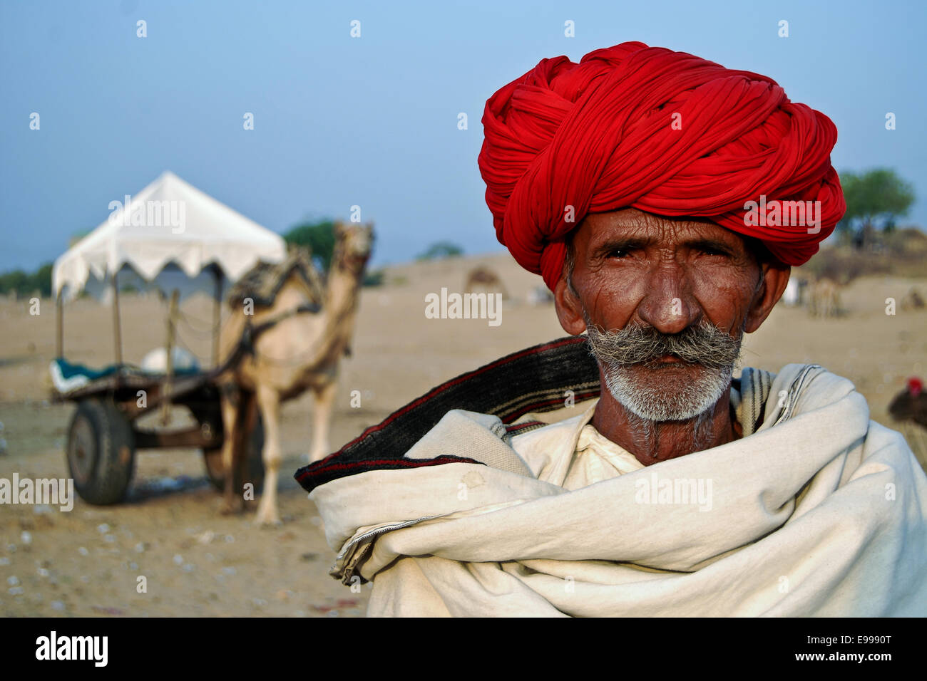Portrait of a old man with camel cart in the background, Pushkar, Ajmer, Rajasthan, India - Stock Image