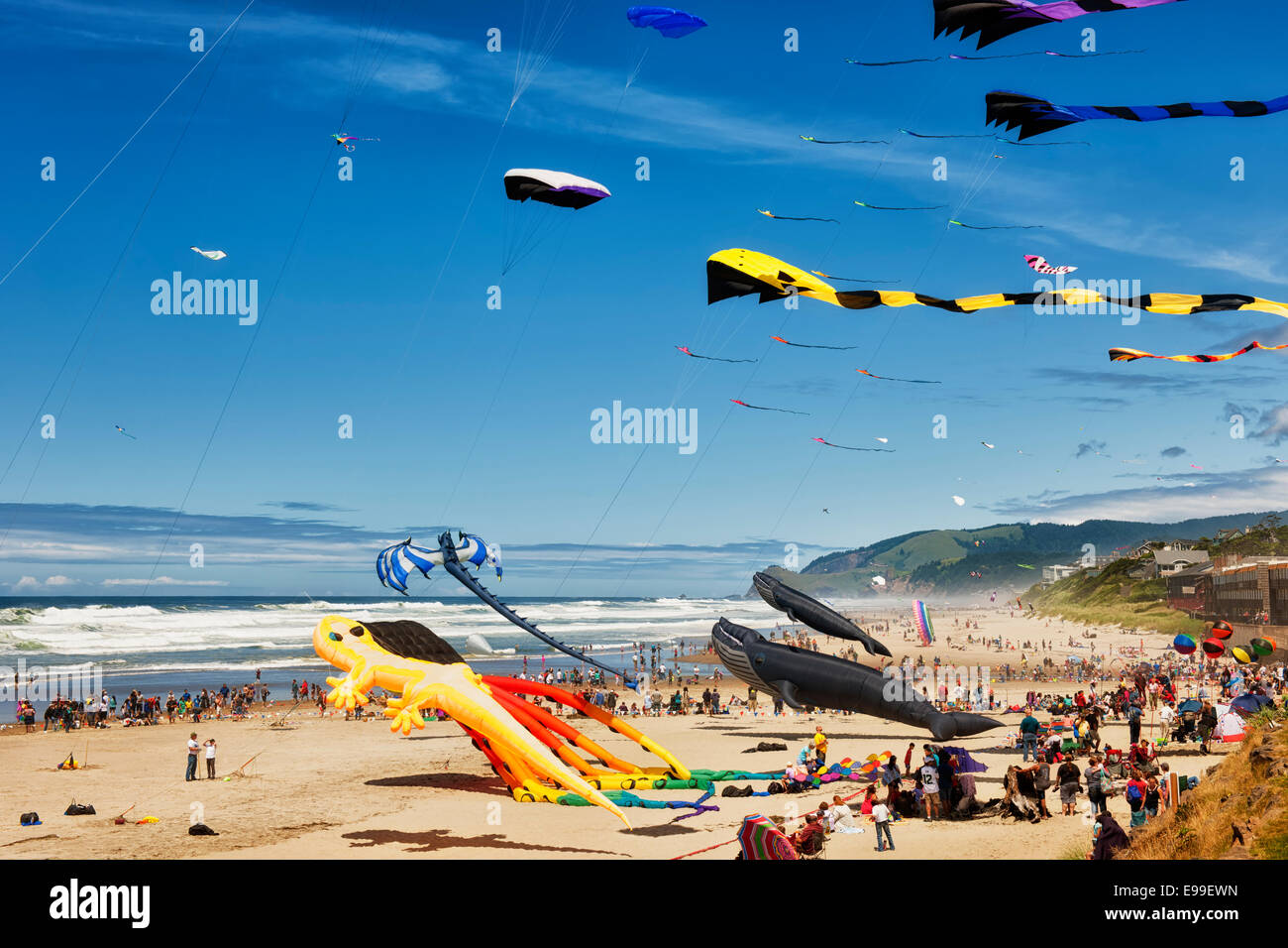 Kites of all sizes and shapes fly at the annual Lincoln City Kite Festival held on Oregon's central coastline - Stock Image
