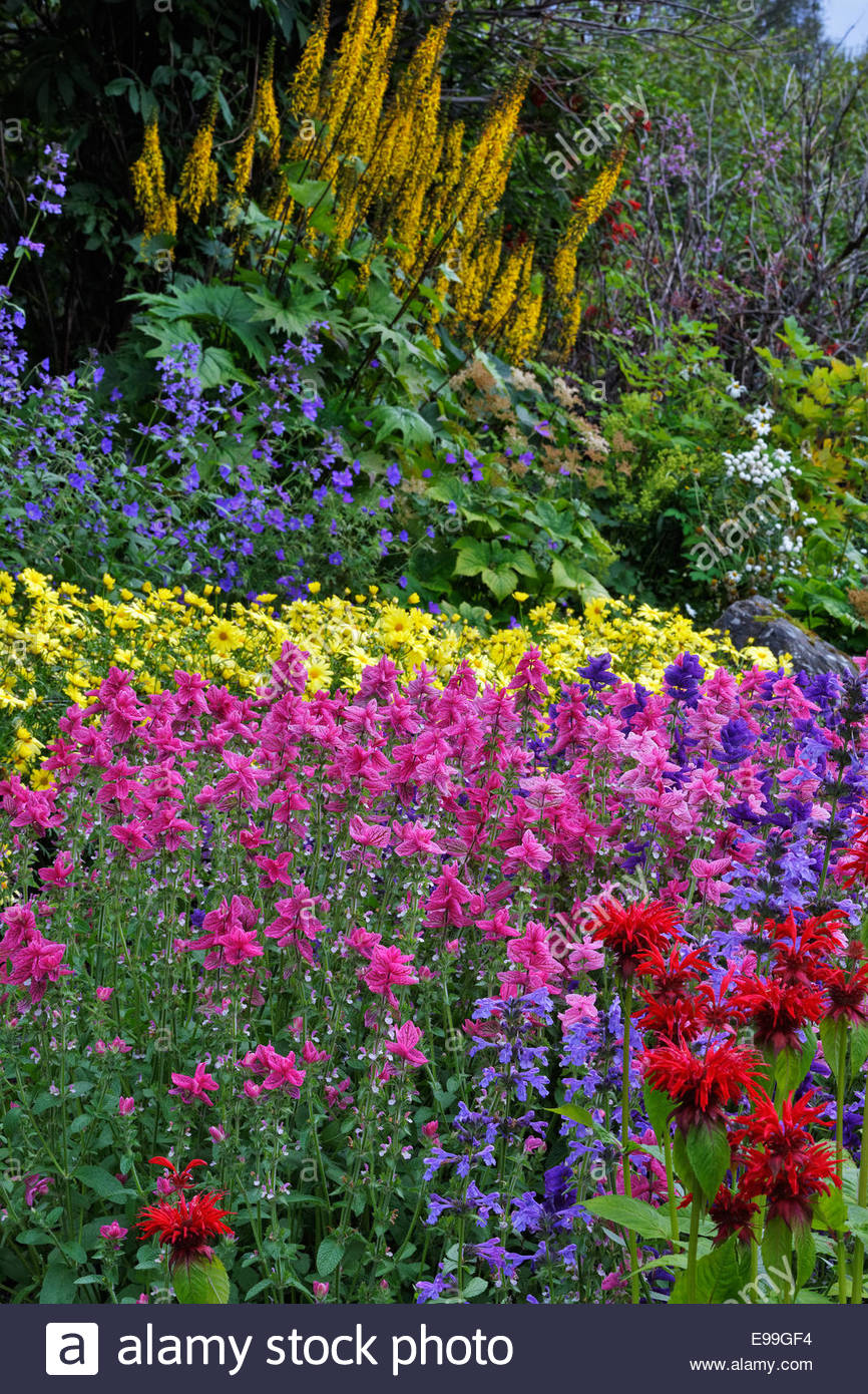 Flowers in Anchorage, Alaska - Stock Image