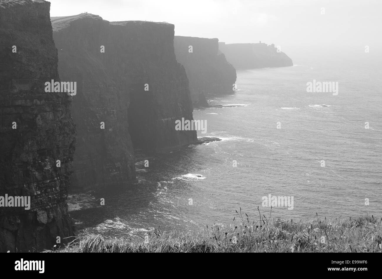Cliffs of Moher (Ireland) - Stock Image