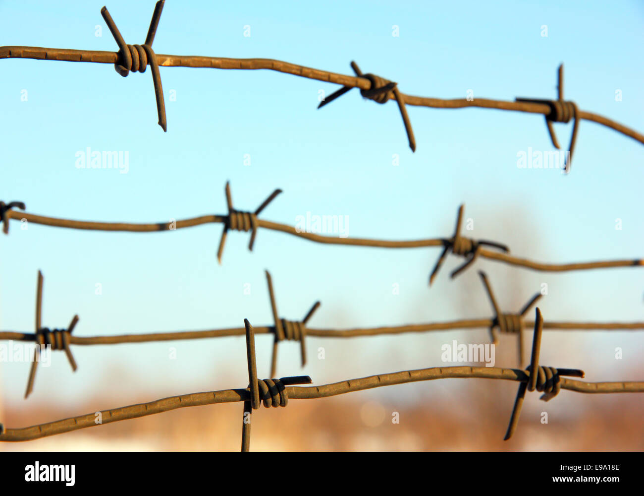 barbed wires against blue sky. - Stock Image