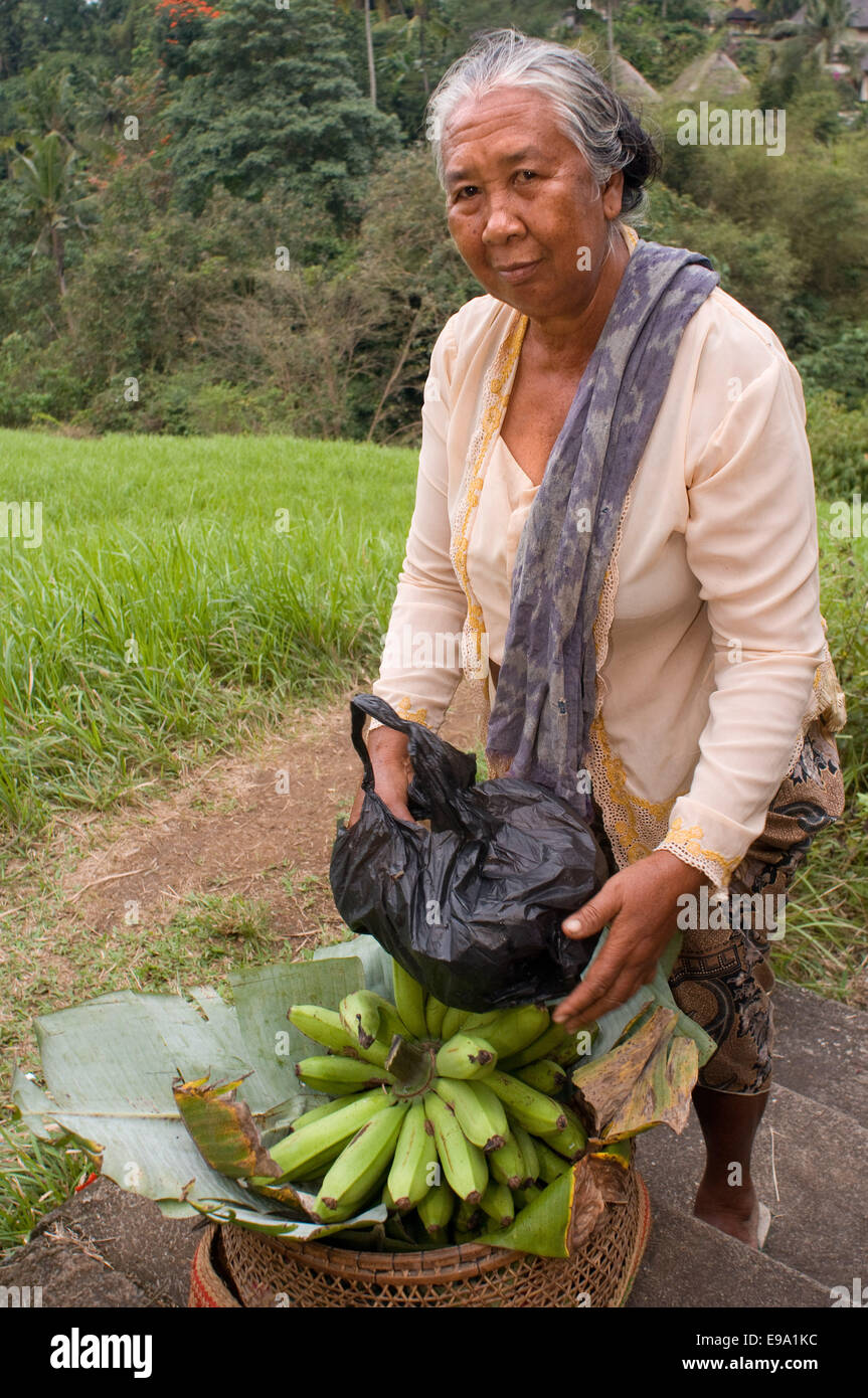 A woman selling bananas along the paddy fields that accompany the walk along the ridge of Campuan. Ubud. Bali. Campuhan Stock Photo