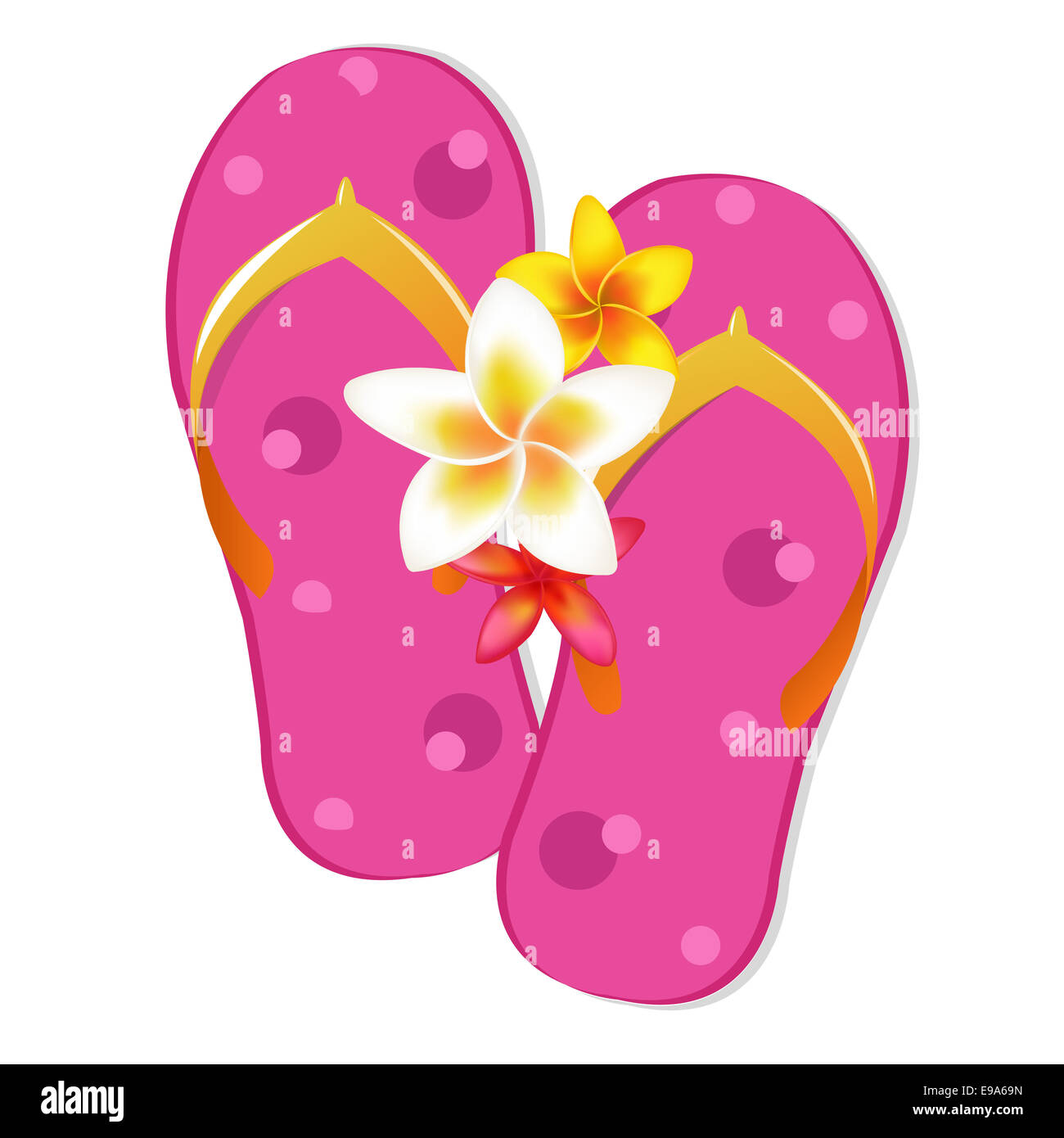 Flip Flop Sandals With Plumeria Flowers Stock Photo 74597873 Alamy