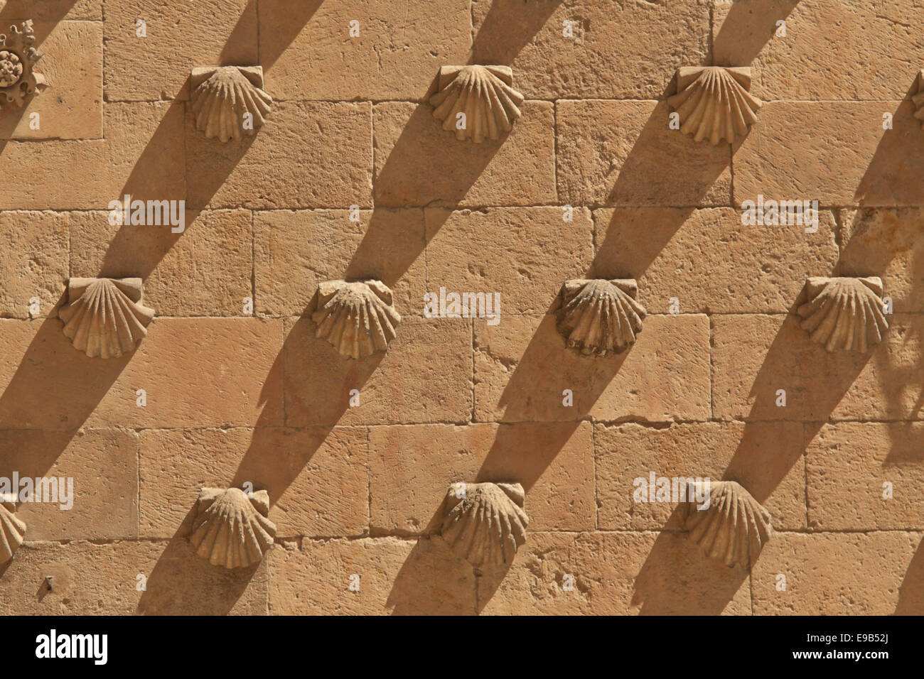 Detailed view of the shells on the façade of Casa de las Conchas, Salamanca, Castilla y León, Spain. - Stock Image