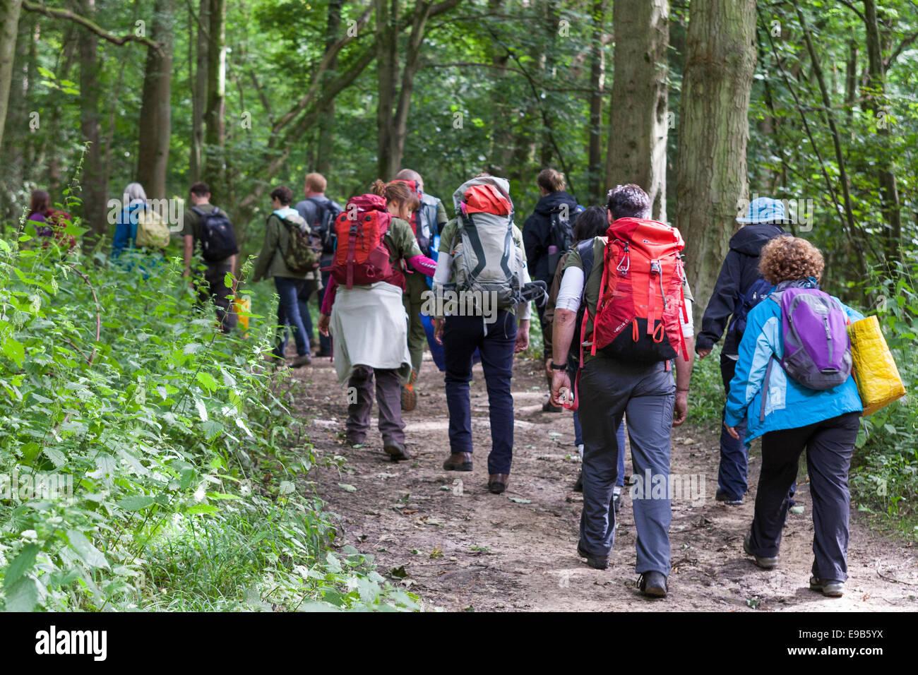 Group of people walking along forest path, [Wytham Woods], Oxfordshire, UK - Stock Image