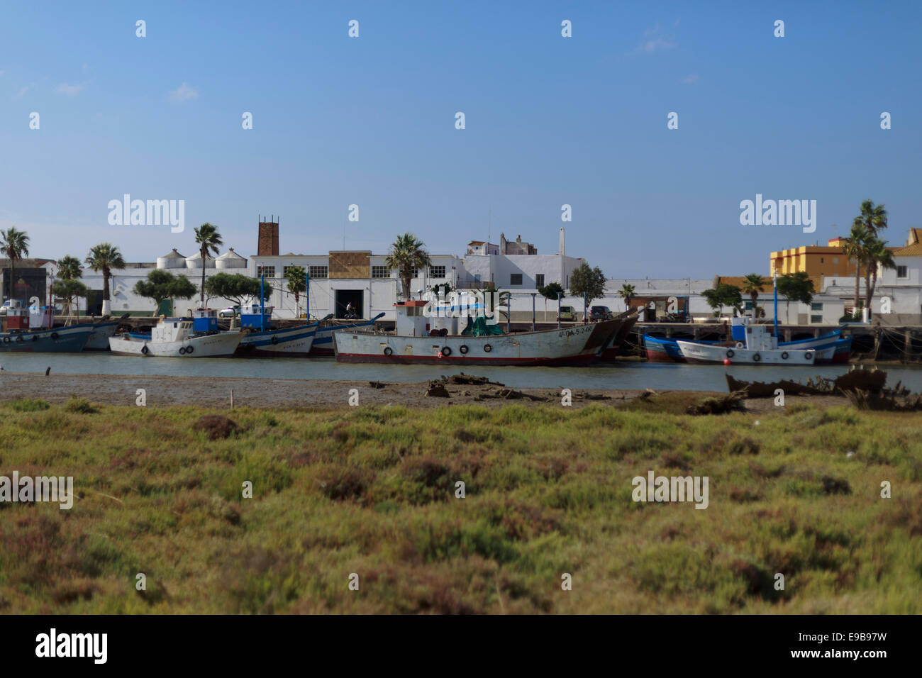 A general view of the Spain Andalusia Barbate old harbor. This photo show the green marshland and boat in the old - Stock Image