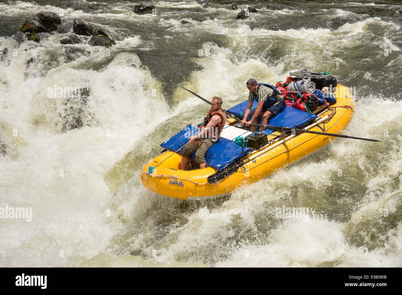 Whitewater rafting fun on the Wild & Scenic Rogue River in Oregon - Stock Image