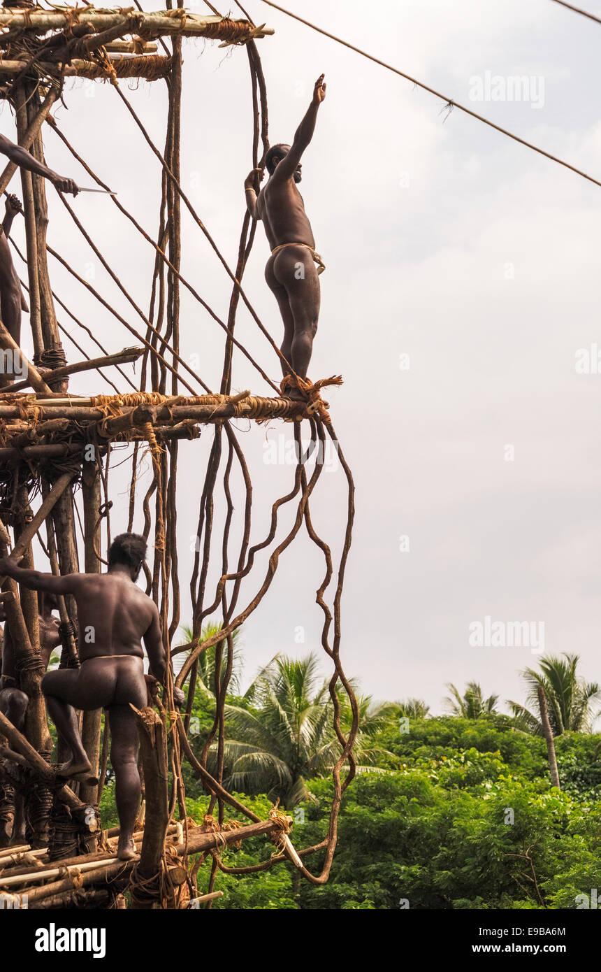 Land diver preparing to jump, Pentecost Island, Vanuatu, Oceania - Stock Image