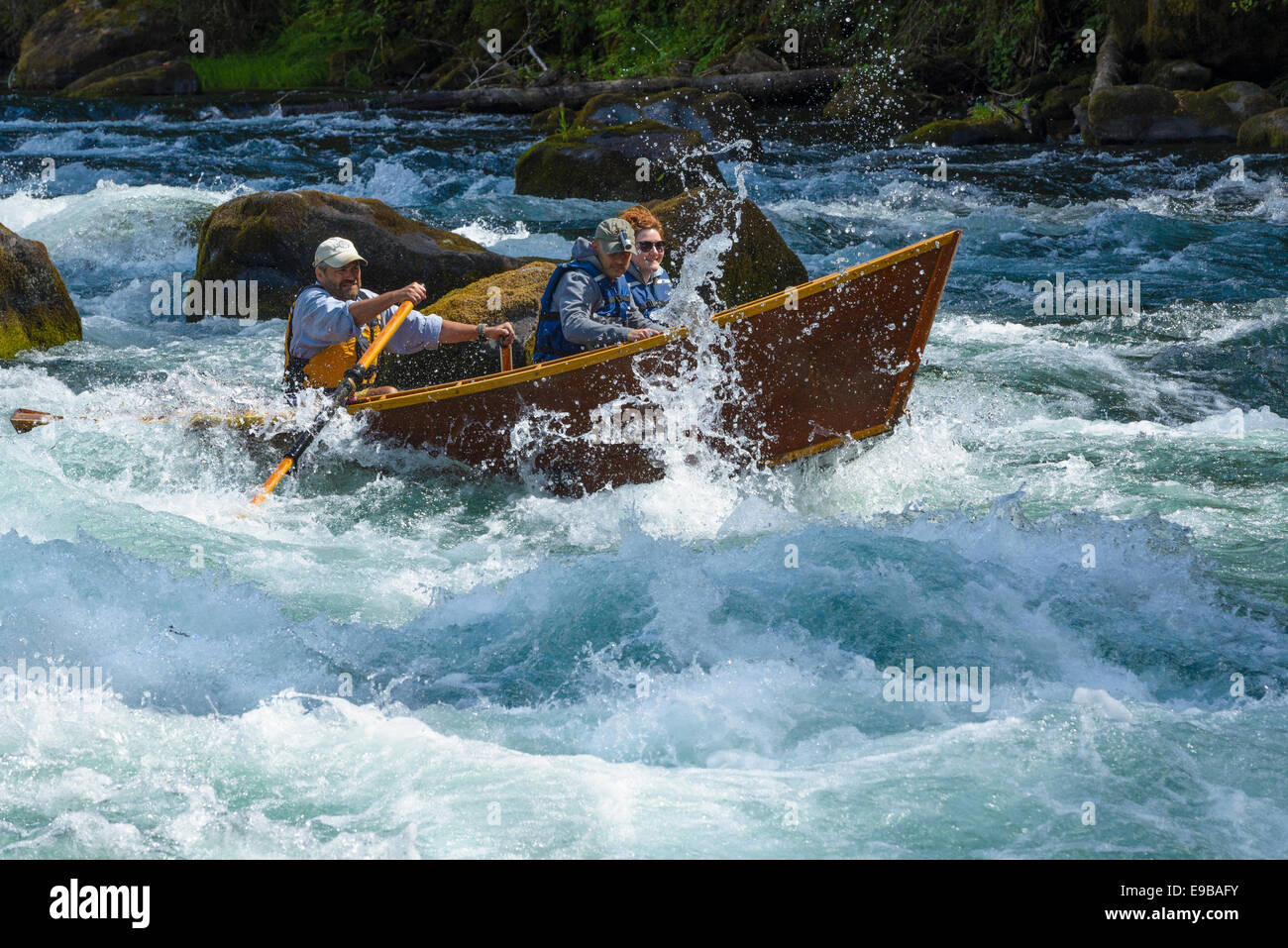 Guide Greg Hatten takes guests on his wooden drift boat through Marten Rapids on the McKenzie River, Oregon. Stock Photo