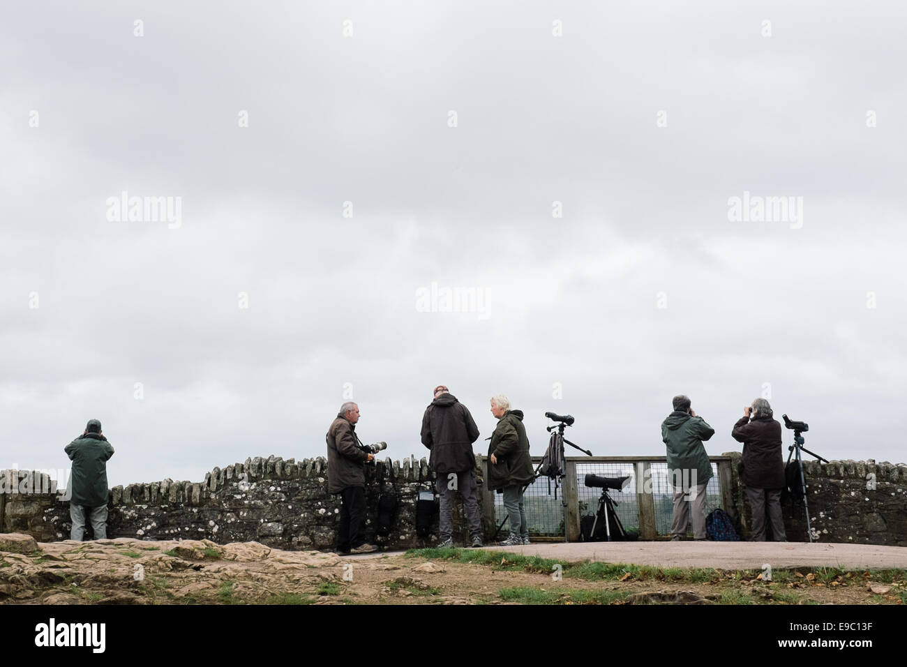 Bird watchers at symonds yat - Stock Image