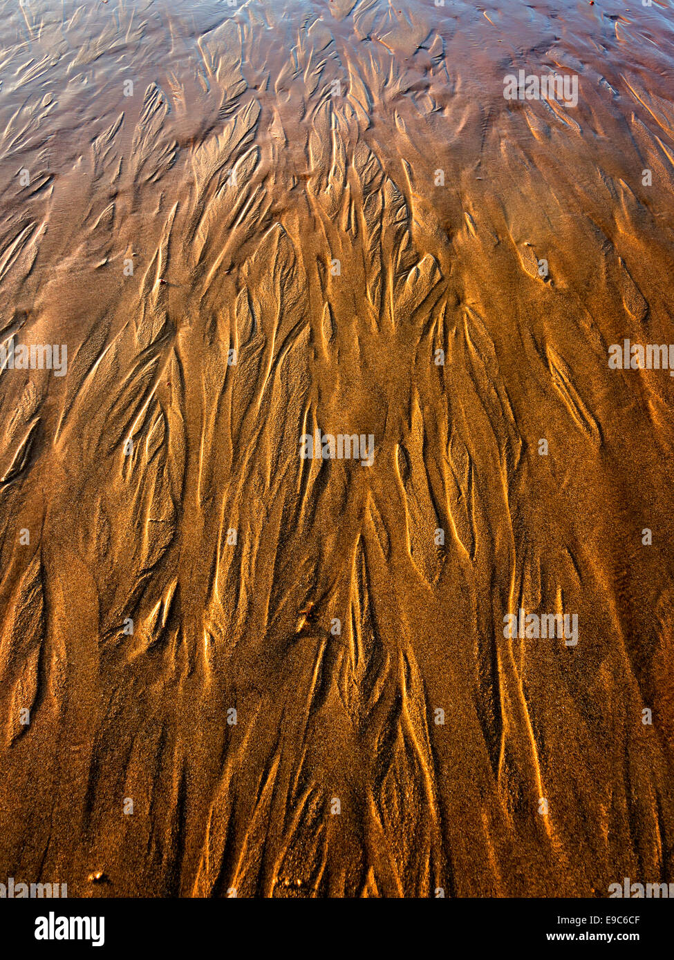 abstract photo with sand textures - Stock Image