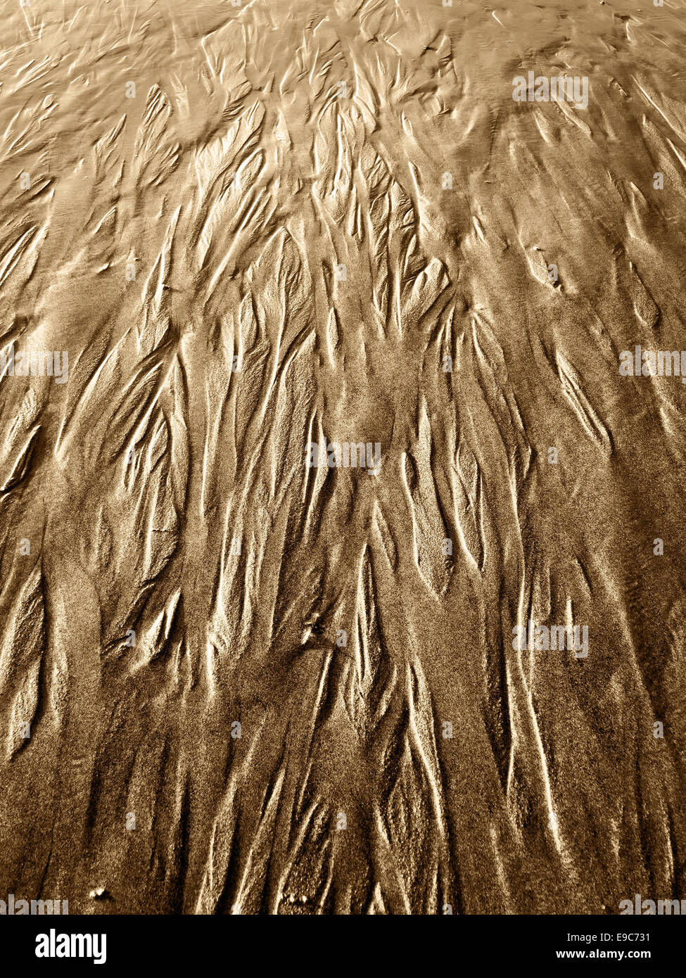 abstract photo with sand texture - Stock Image