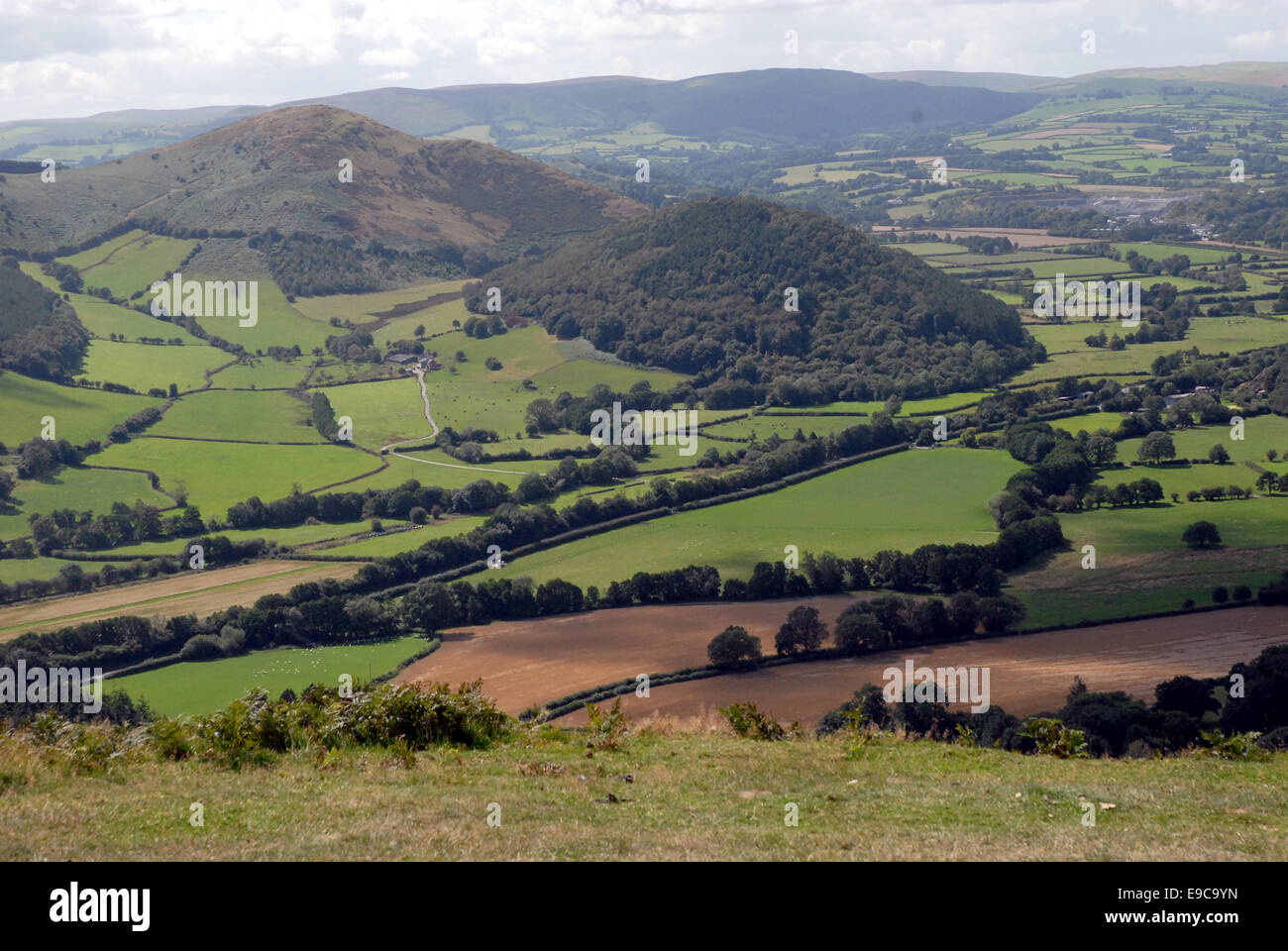 Looking off Bradnor Hill into Powys. - Stock Image