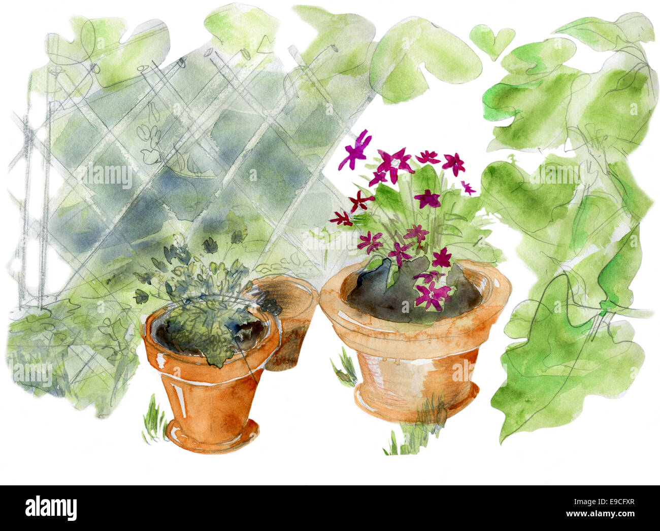 Garden pots, original watercolor sketch. Stock Photo