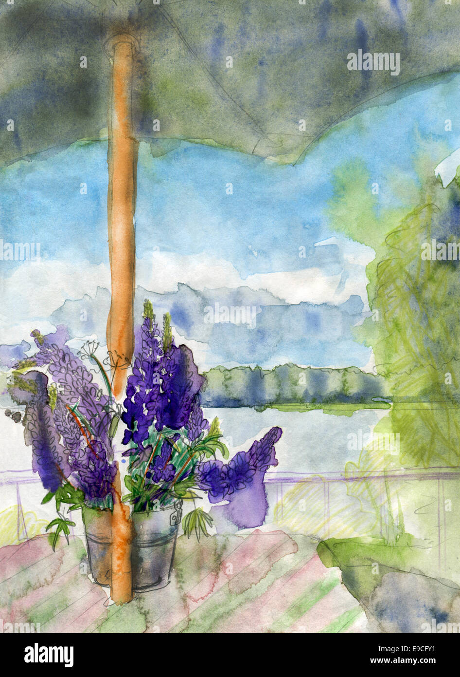 Lupines and umbrella, original watercolor sketch. Stock Photo