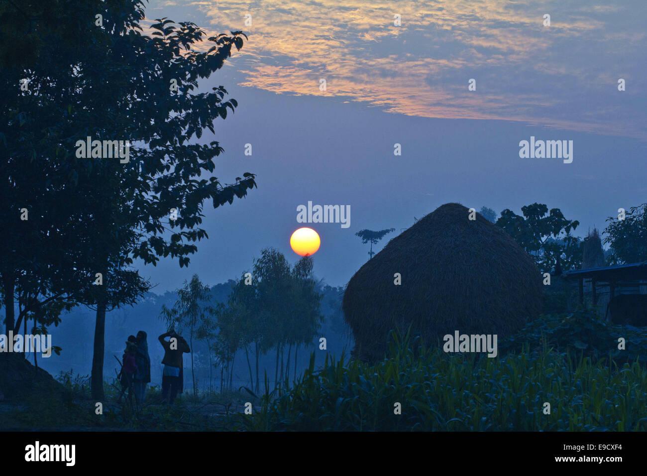 Munshigonj, Bangladesh. 2nd Jan, 2012. Sunset scenery of a village.Life in a Bangladesh village is, as a rule, dull Stock Photo