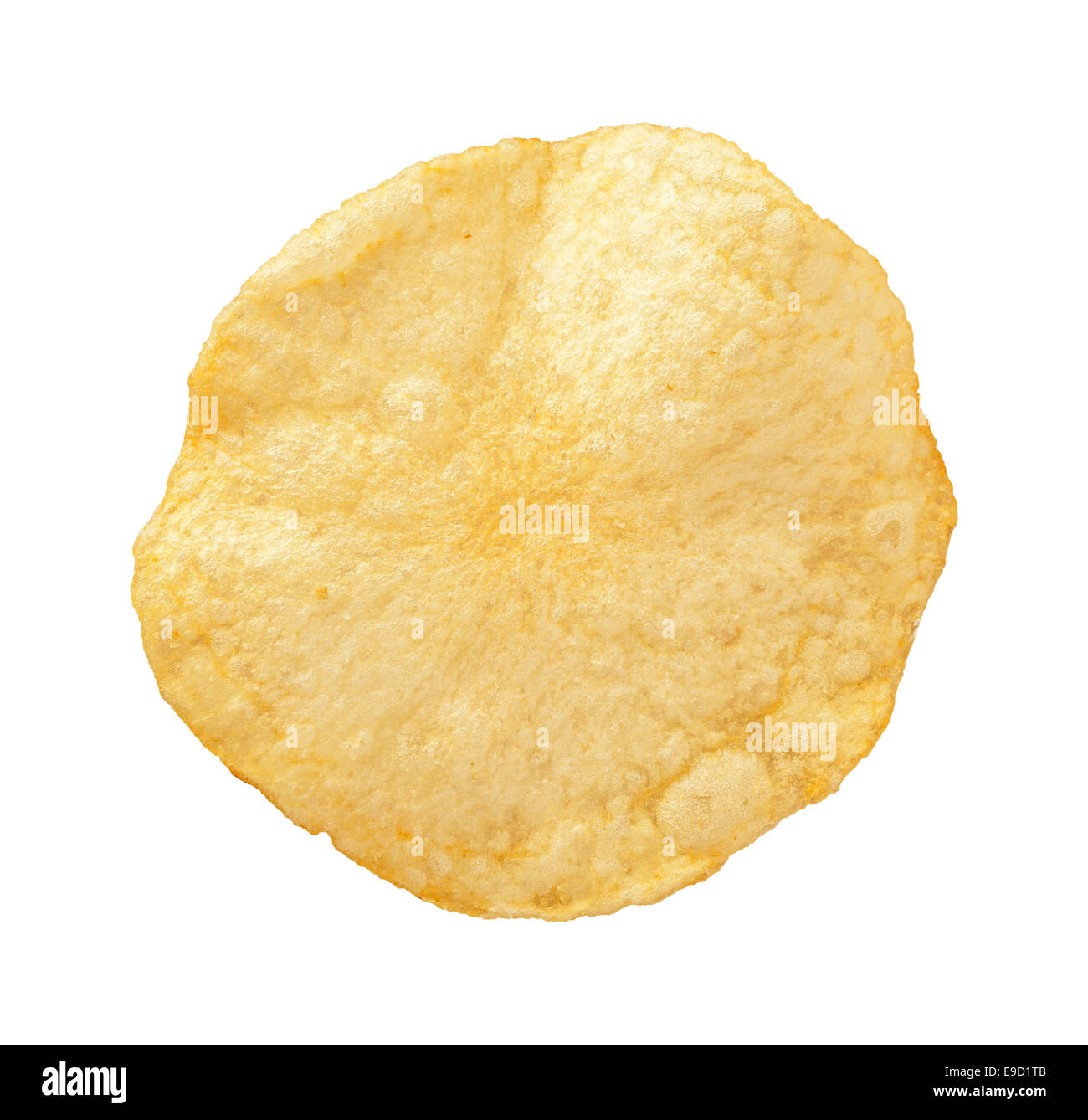 A single Potato Chip isolated on a white background - Stock Image