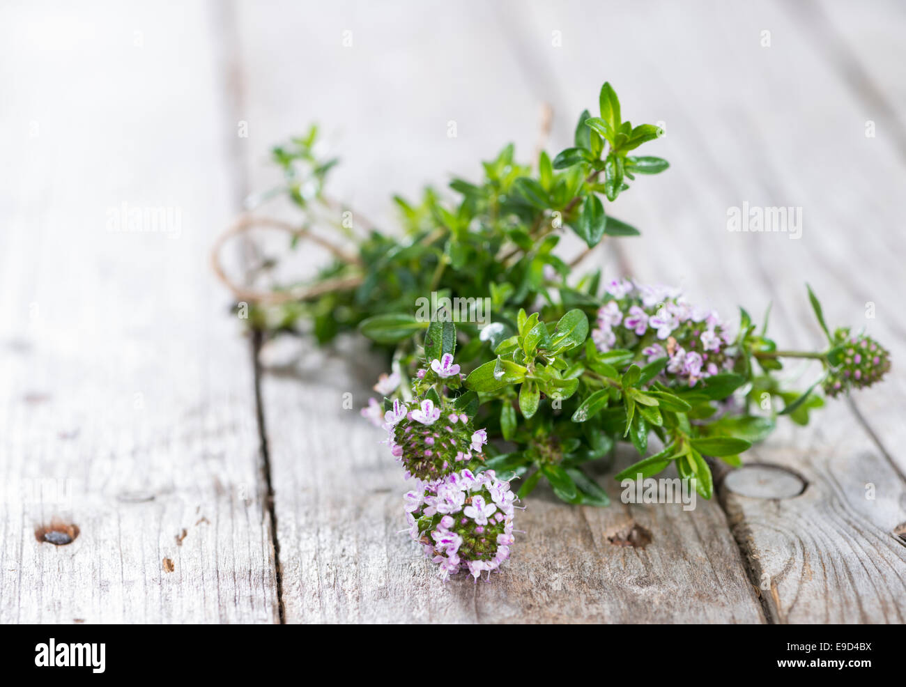 Small bunch of fresh Winter Savory (close-up shot) - Stock Image