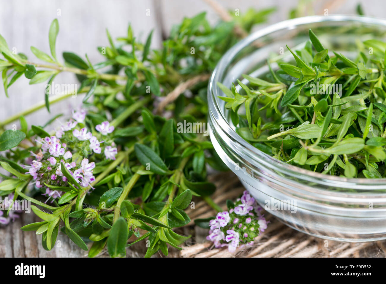Portion of fresh Winter Savory in a small bowl - Stock Image