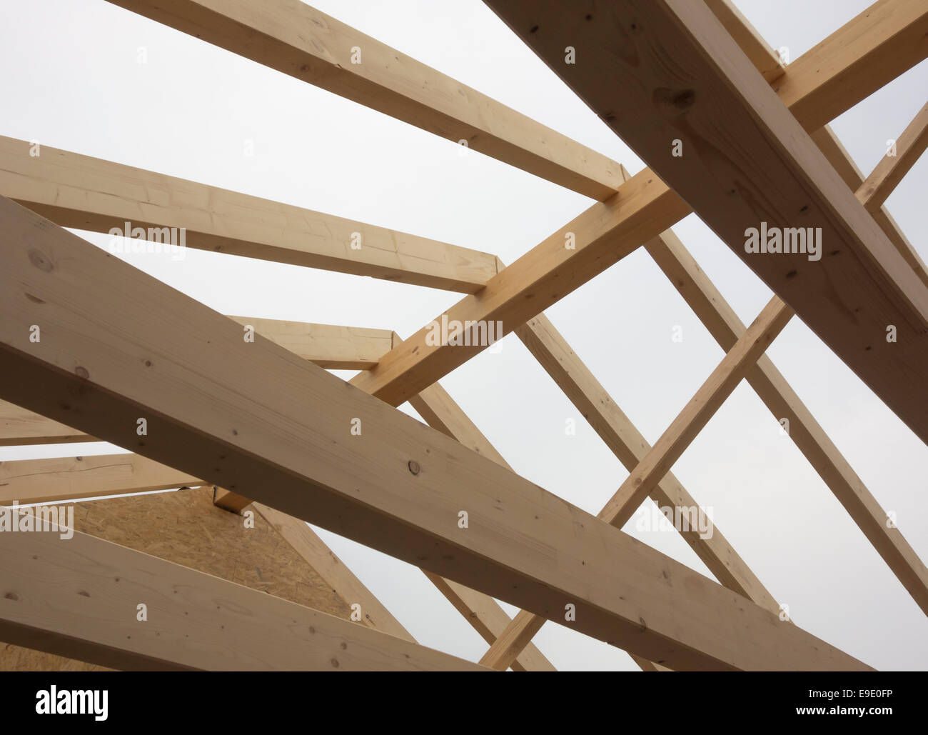 Roof trusses - Stock Image