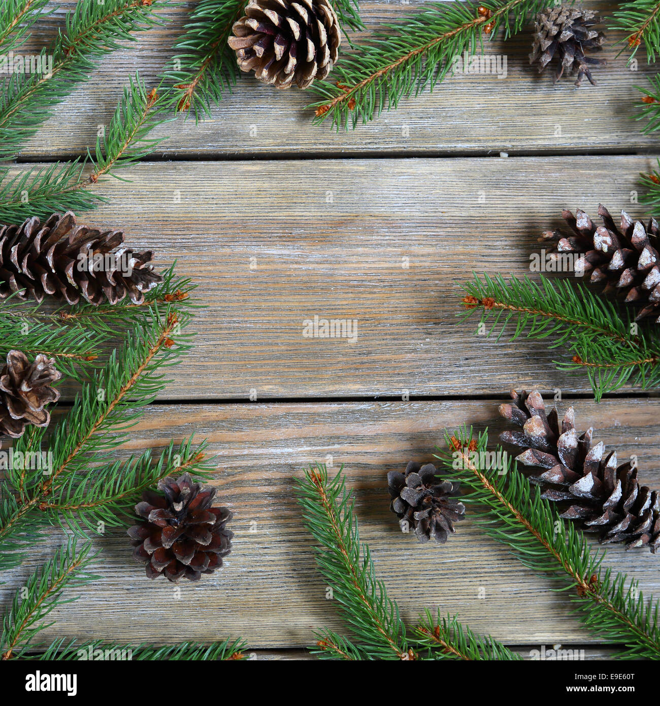 Christmas frame with pine branch and cones on wooden boards, Xmas - Stock Image