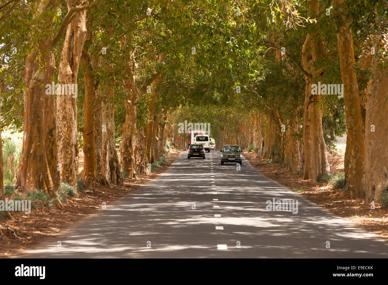 Vehicles driving on the road between Flacq and Port Louis, Mauritius - Stock Image