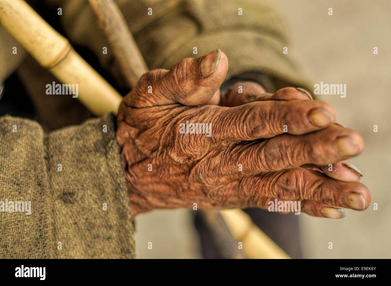 Wrinkled hands of an Indian holding a stick - Stock Image