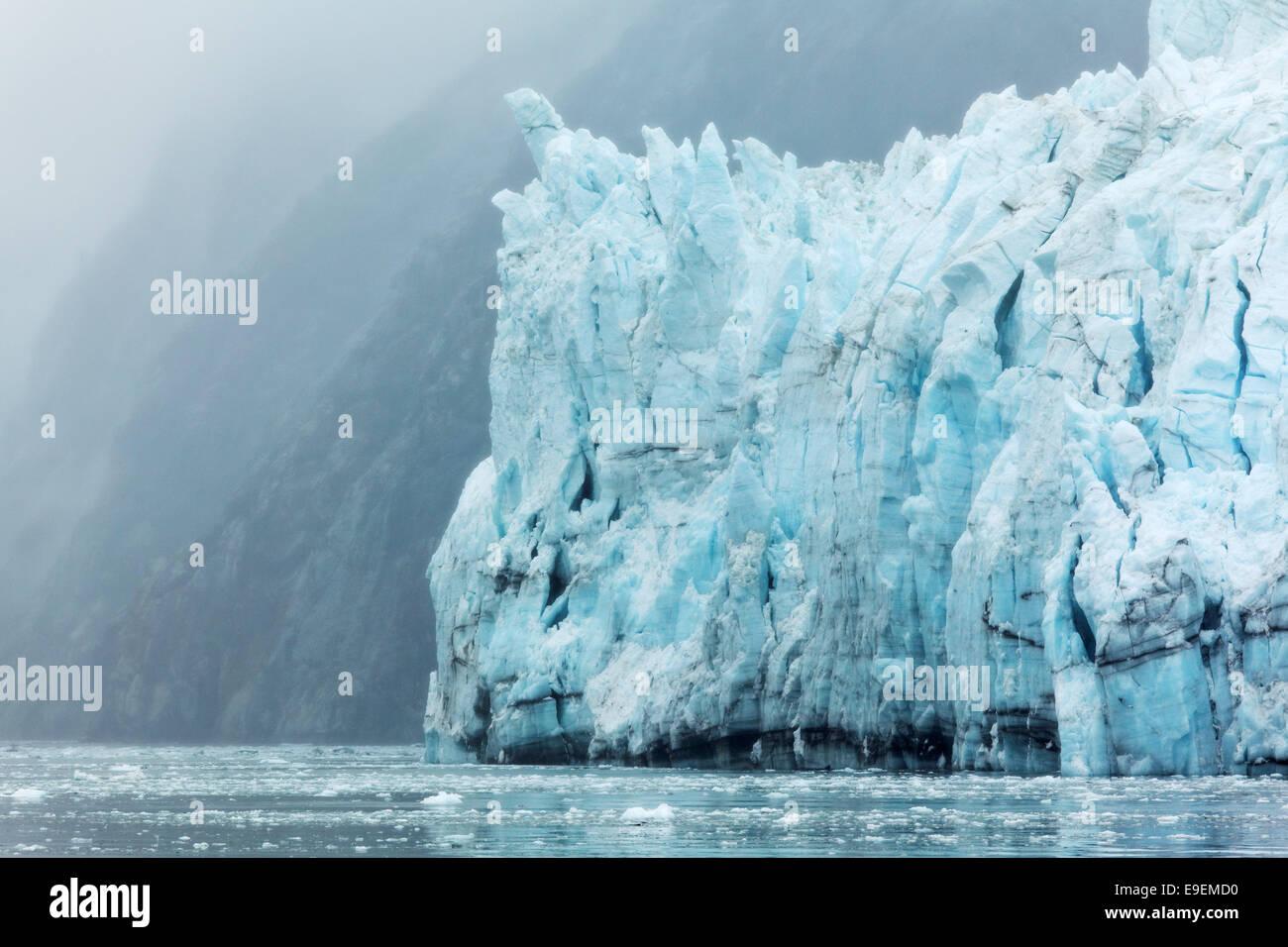 Terminus of Margerie Glacier, Glacier Bay National Park, Southeast Alaska, USA - Stock Image