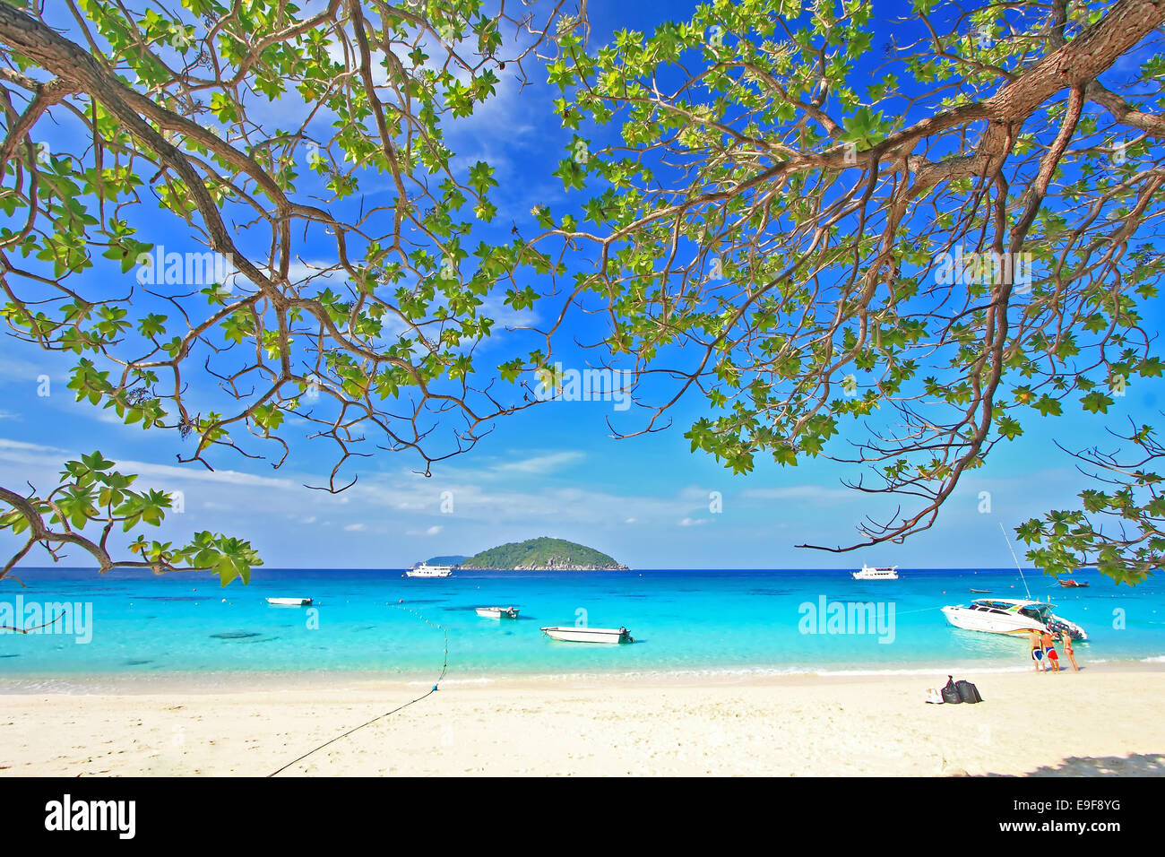 Similan National Park - Stock Image