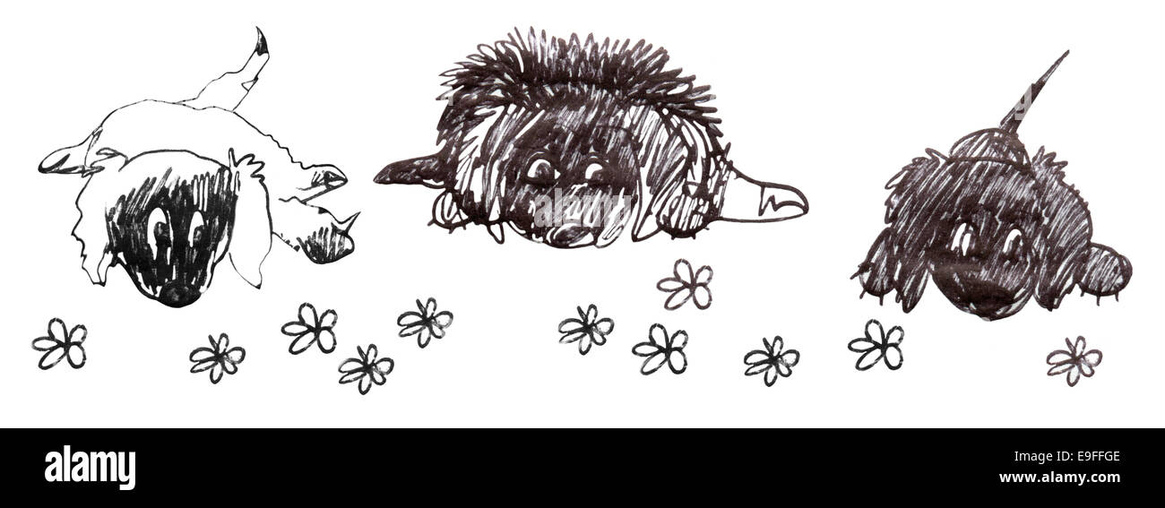Three dogs, down on the floor, waiting. Cartoon sketch in black and white. Stock Photo
