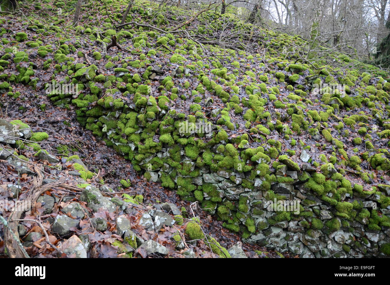 old stonewall - Stock Image