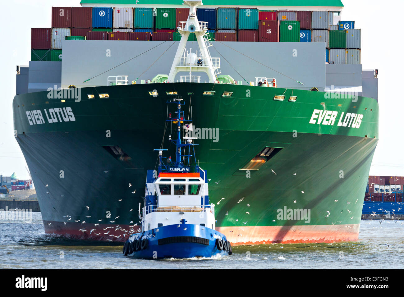 Container Ship Ever Lotus being towed by tug boat, Hamburg Harbour, Germany, Europe. - Stock Image
