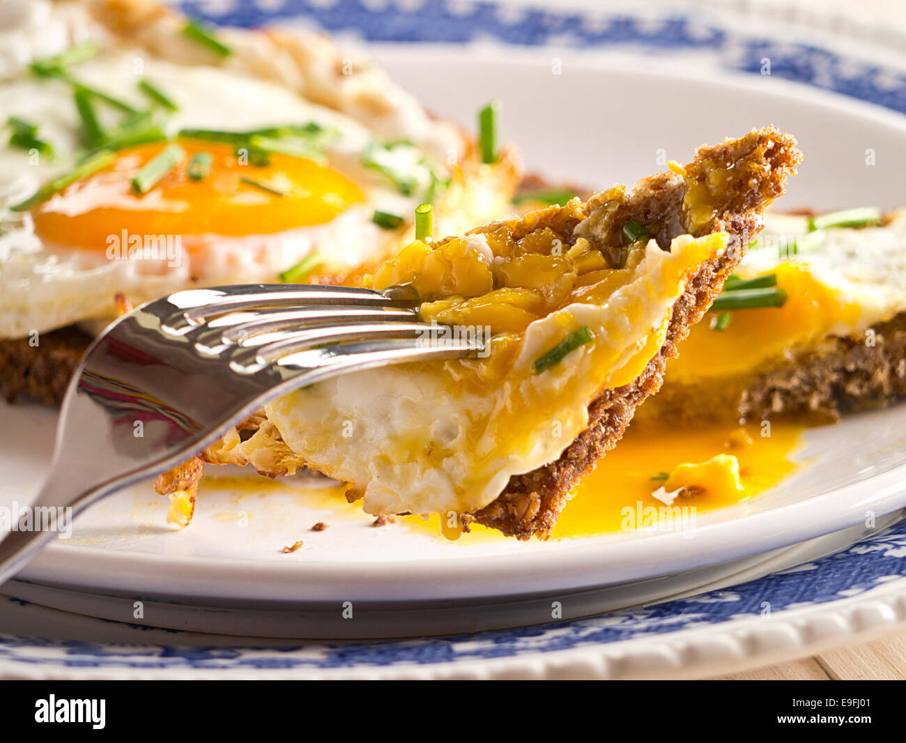 Fried egg on a slice of bread. Stock Photo