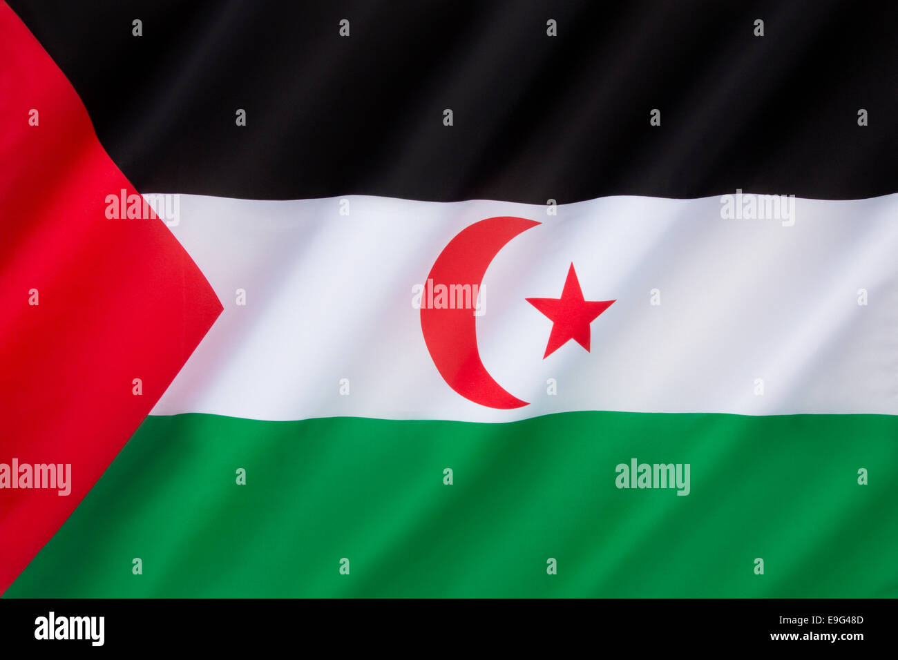 Flag of Western Sahara - Stock Image