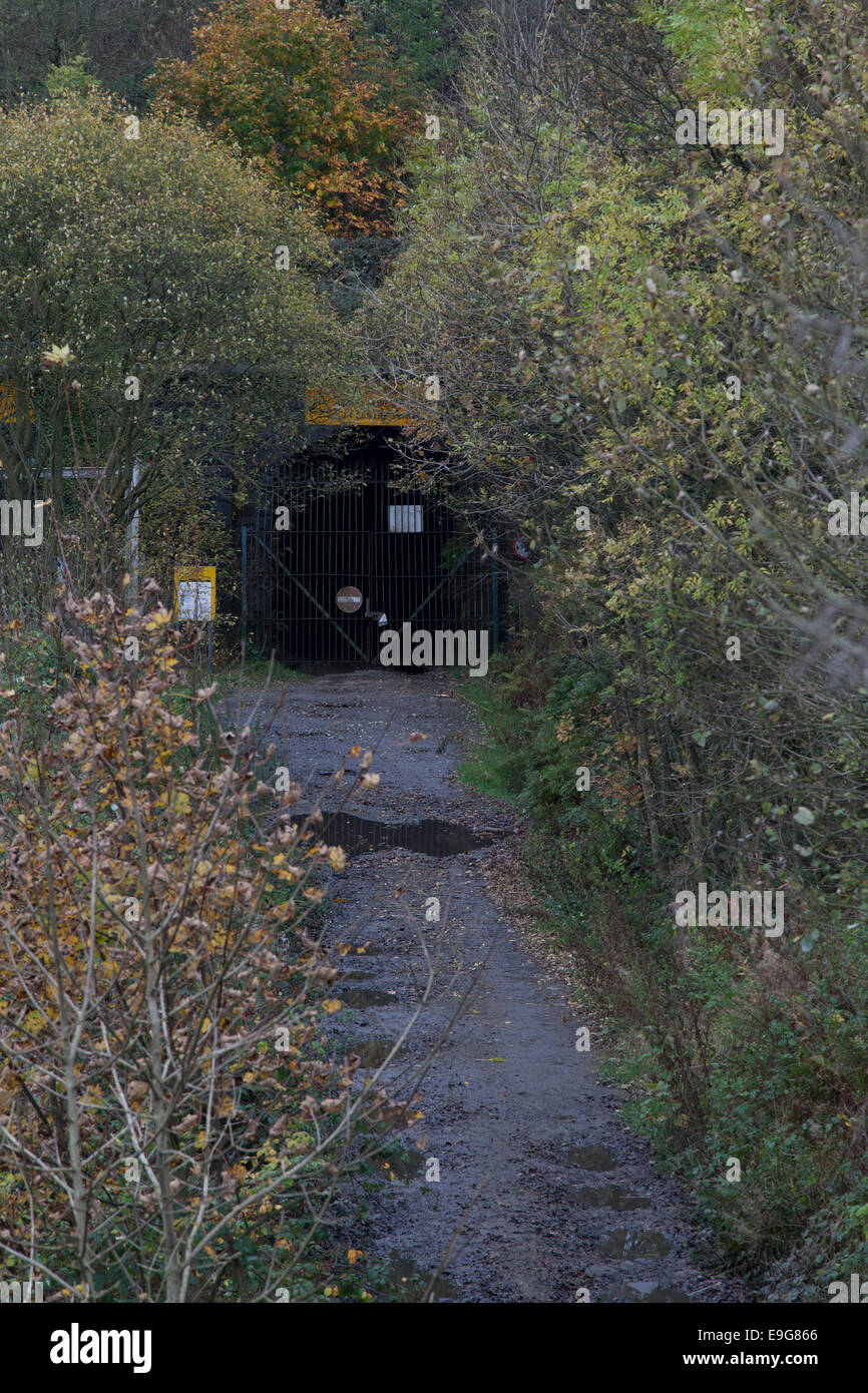 Diggle, UK. 27th Oct, 2014. The UK Government announces it will develop a strategy for a new high speed rail link Stock Photo