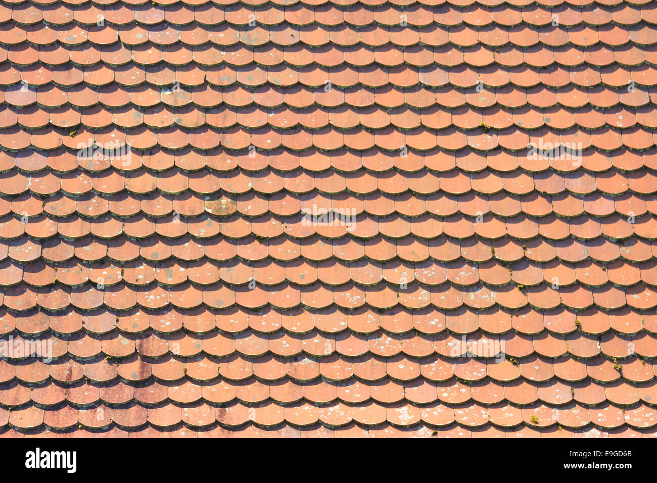 Roof with red tiles Stock Photo