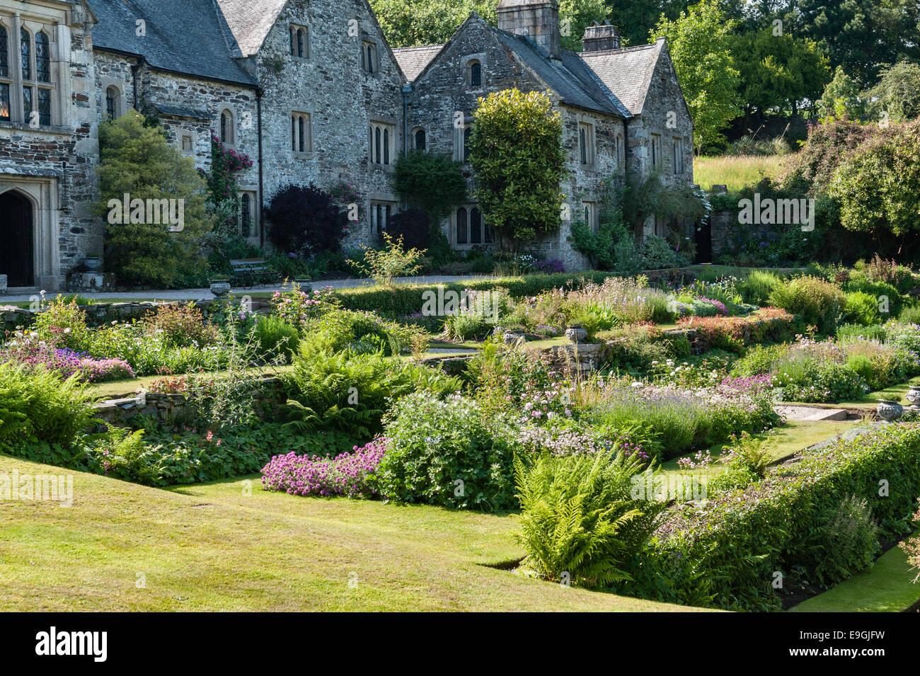 Cotehele, Saltash, Cornwall, UK. The garden terraces in summer - Stock Image