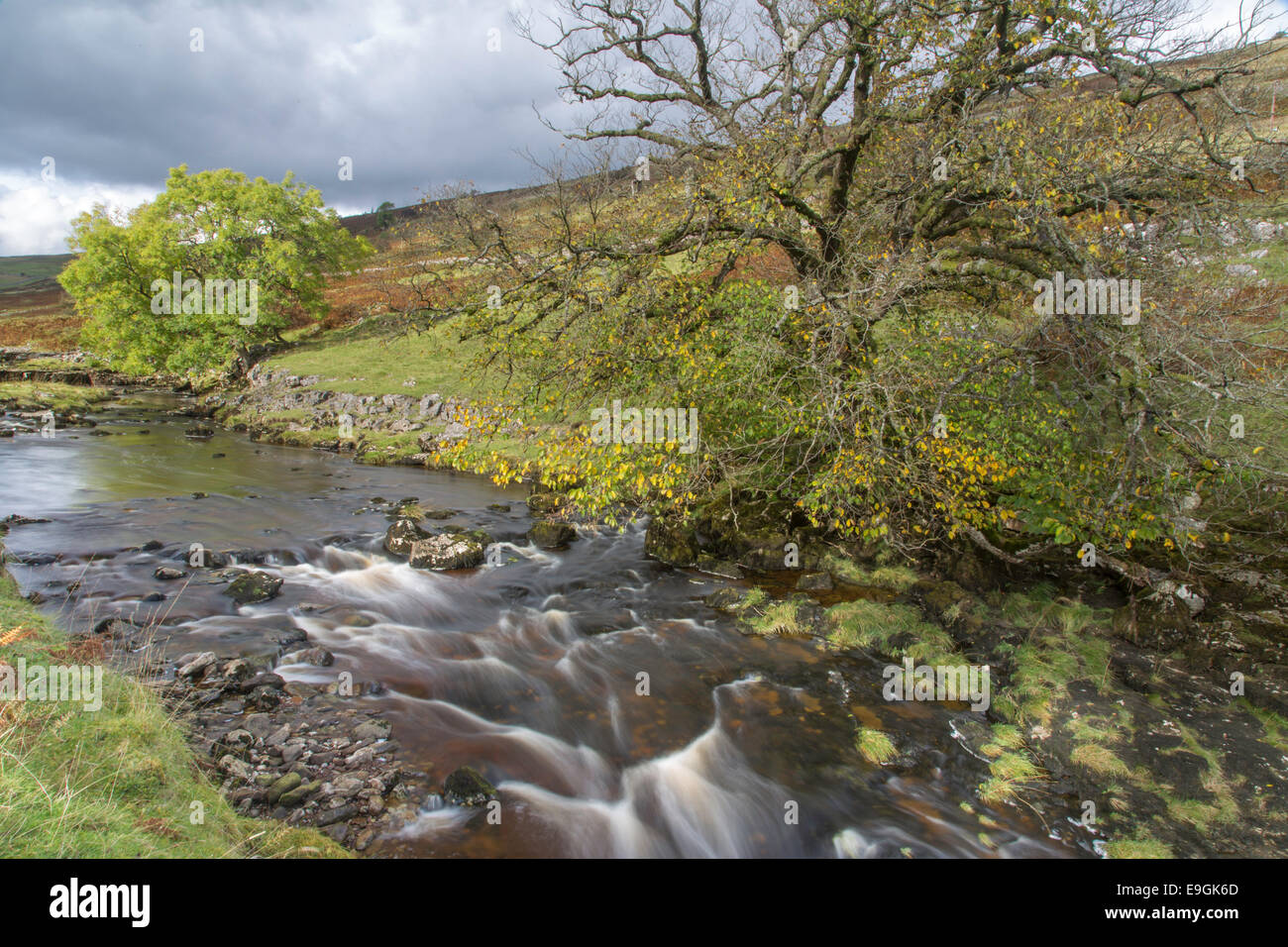 Autumn on the River Wharf near Yockenthwaite in Upper Wharfdale, Yorkshire Dales National Park, North Yorkshire, - Stock Image