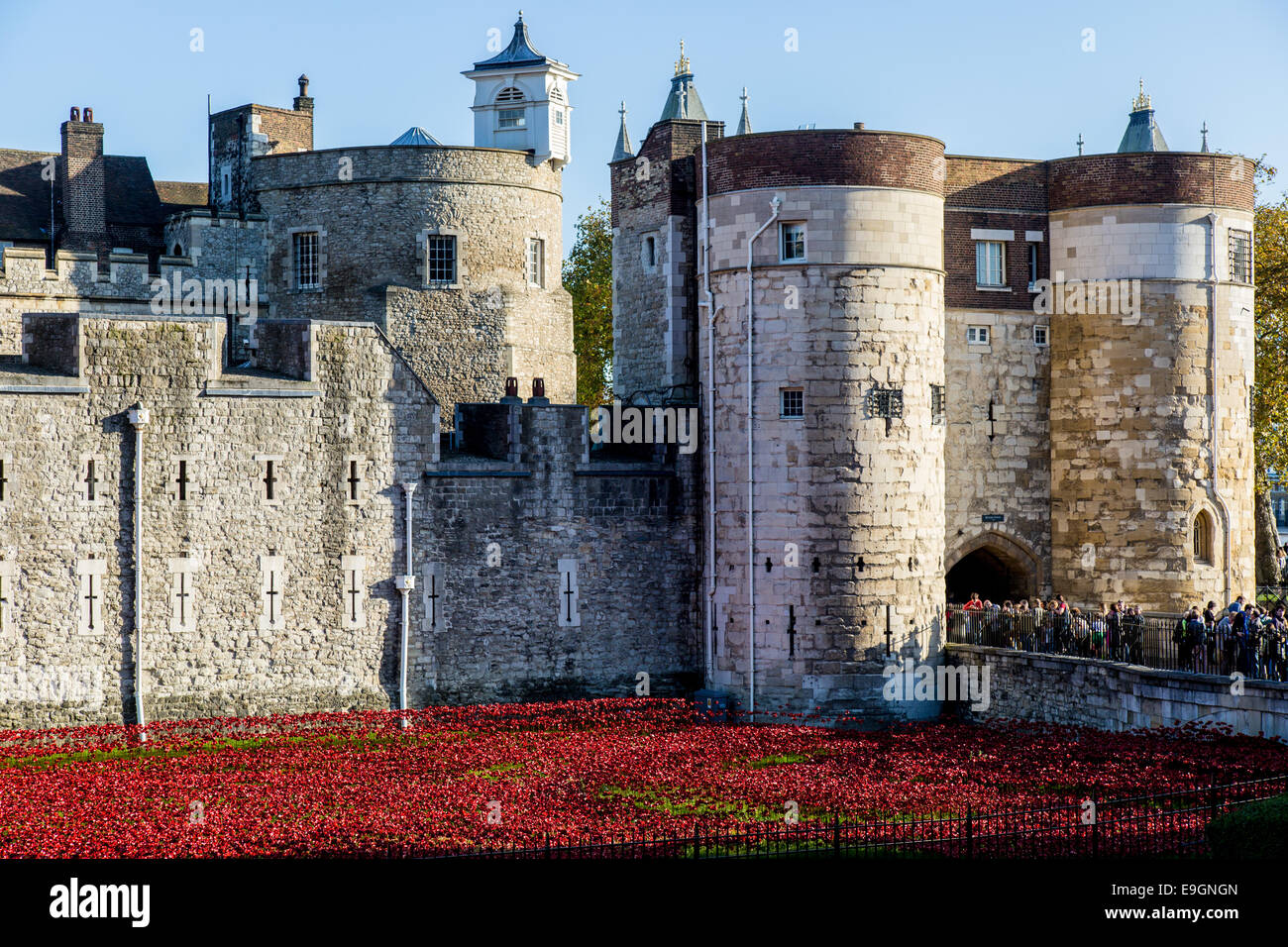 Blood Swept Lands and Seas of Red - Poppies Tower of London UK Stock Photo