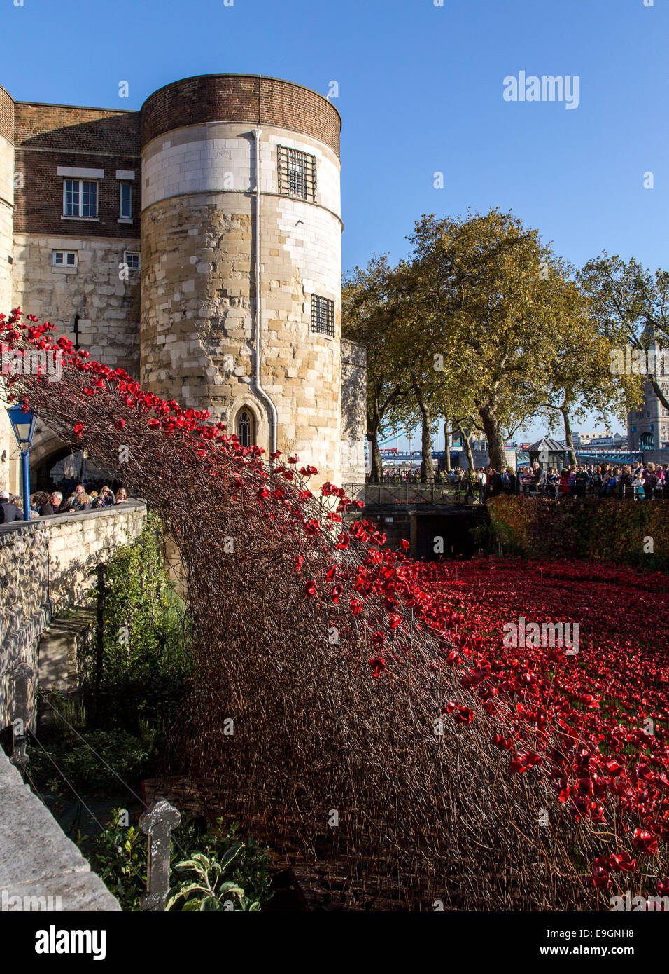 Blood Swept Lands and Seas of Red - Poppies Tower of London UK - Stock Image