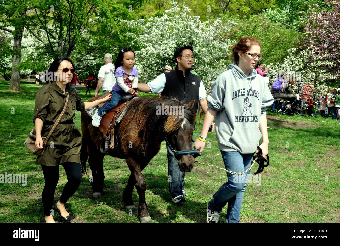 NYC:  A little Asian girl enjoys a pony ride accompanied by her parents and a trainer in Riverside Park - Stock Image