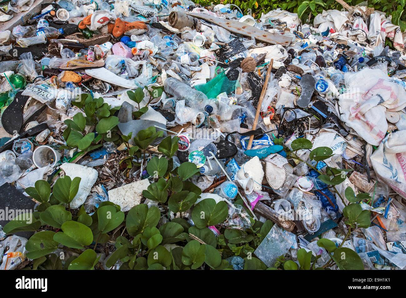 Waste heap, Wakatobi Dive Resort, Sulawesi, Indonesia - Stock Image