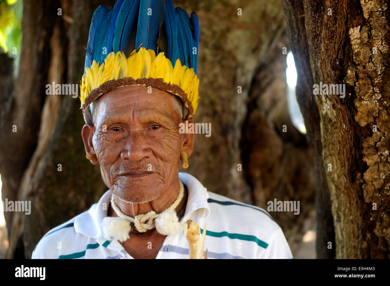 Cacique of the Xavante people, indigenous tribe, with the headdress of a chief, Primavera do Leste, Mato Grosso, - Stock Image