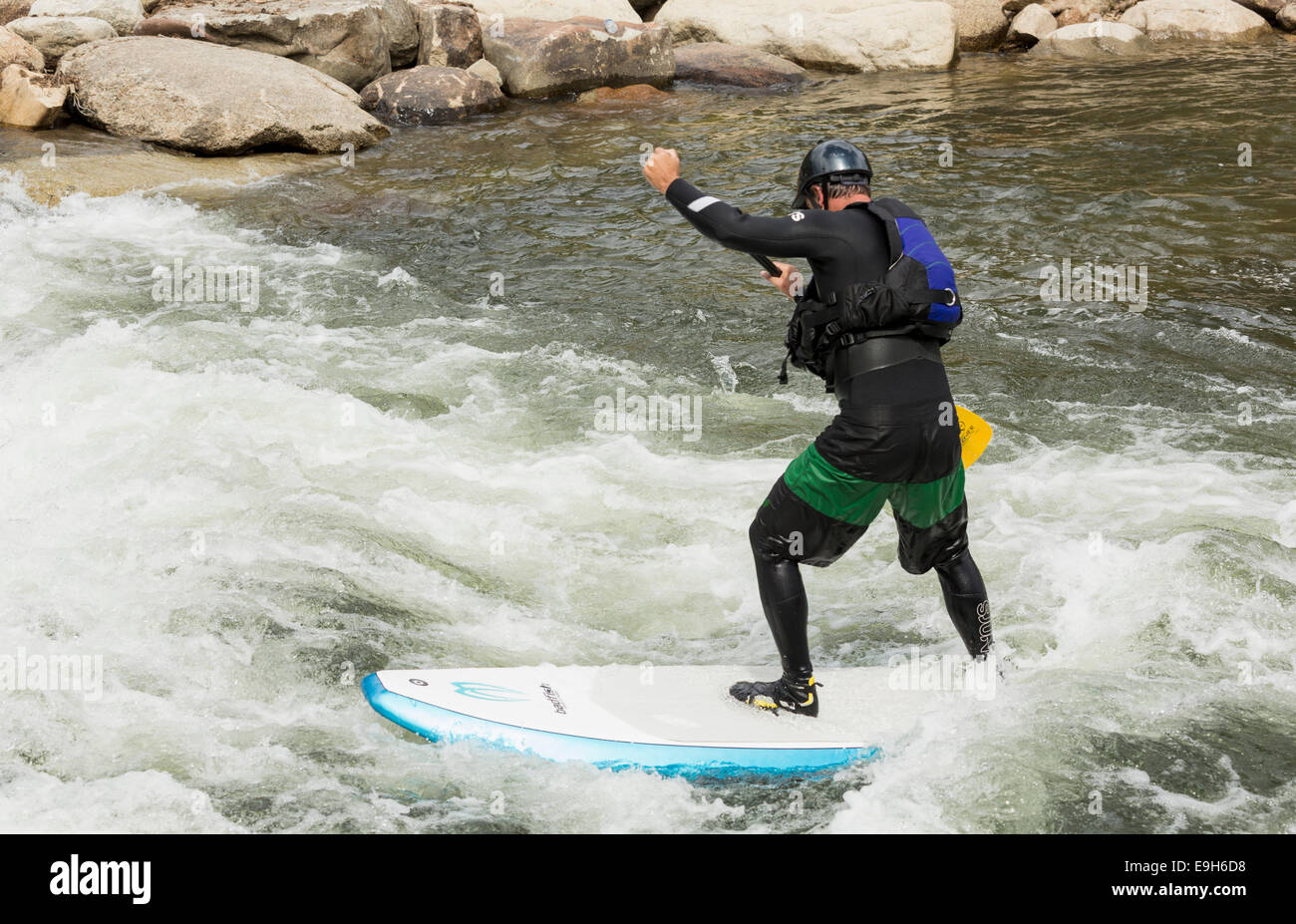 Man on a stand-up paddle board in the rapids of River Arkansas at Buena Vista, Colorado, USA - Stock Image