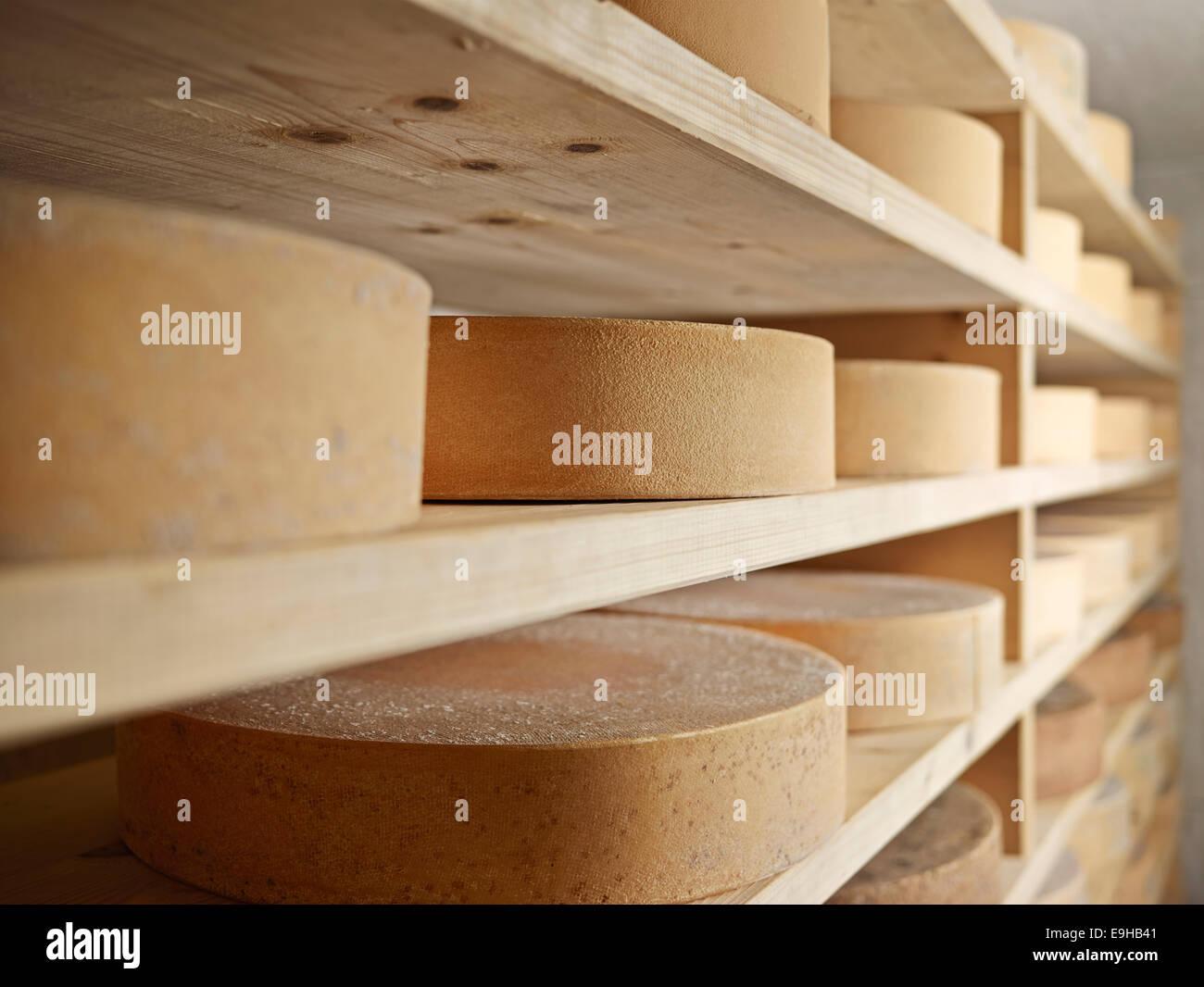 Storing mountain cheese, Steinbergalm, Inneralpbach, Alpbach, Tyrol, Austria - Stock Image