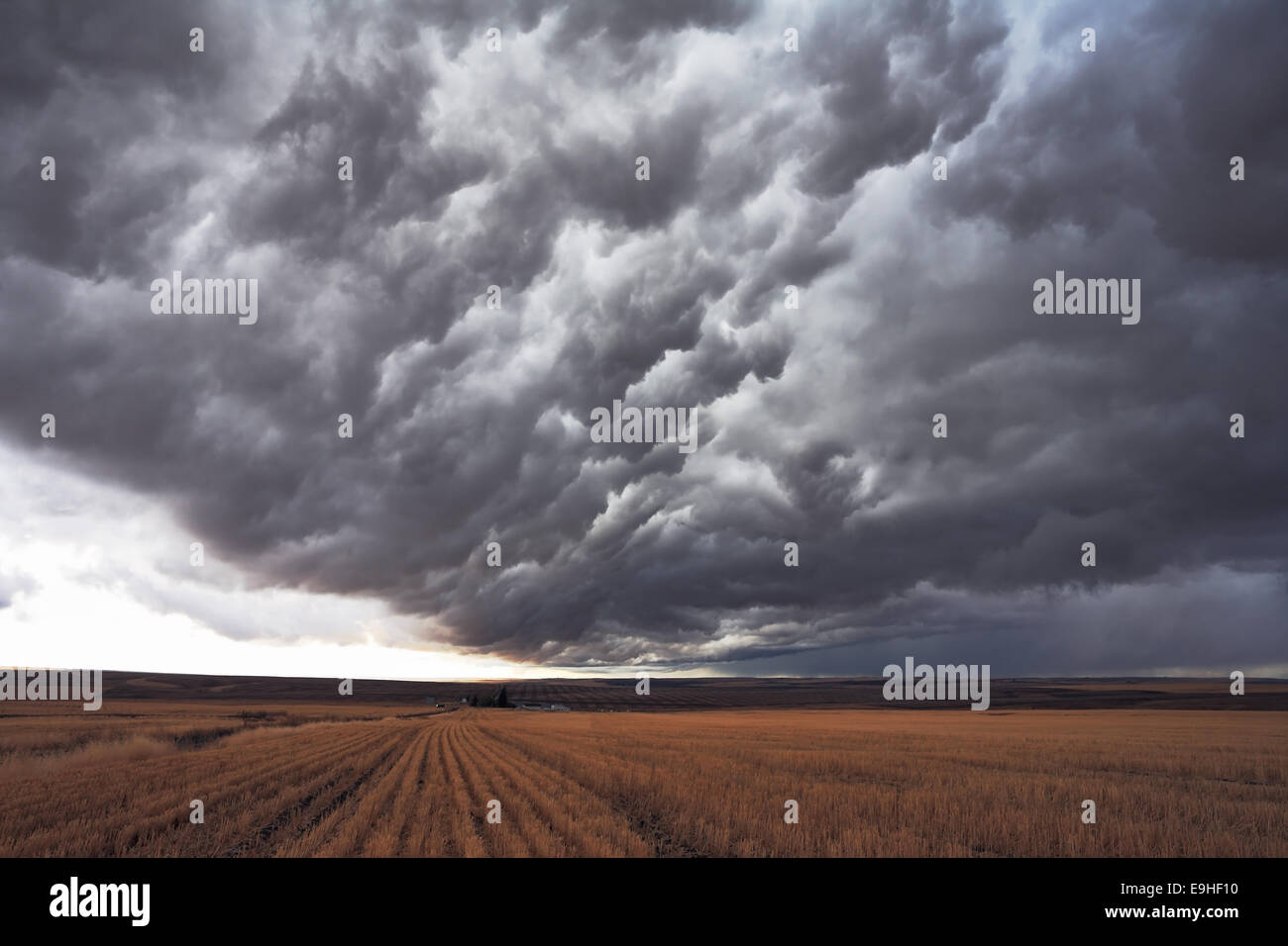 The enormous storm cloud - Stock Image