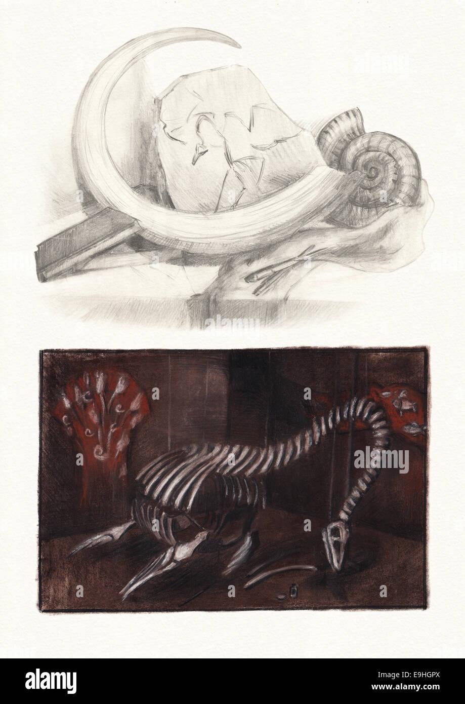 Paleontology - Stock Image