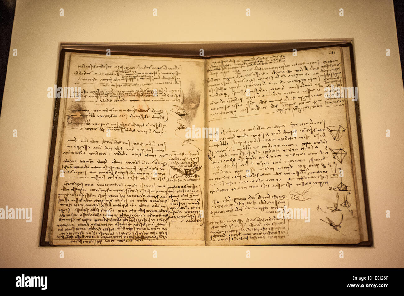 Turin, Italy. 28th October, 2014. Royal Library of Turin. Presentation of the exhibition 'Leonardo and the treasures - Stock Image