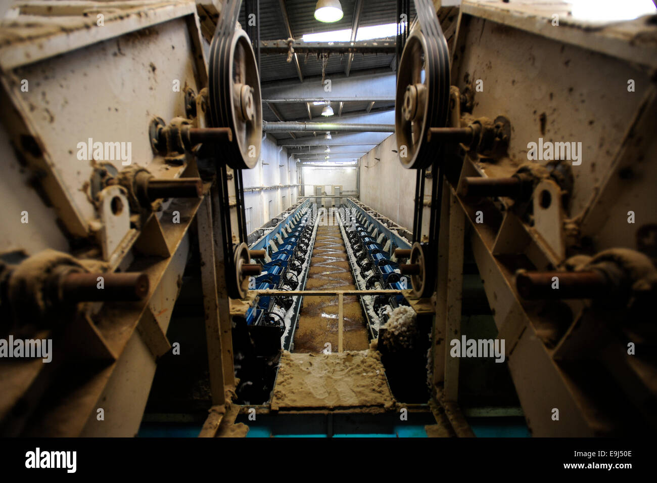 TURKEY, Menemen, ginning factory, processing of harvested conventional cotton, seperating of fibre and seed by machine - Stock Image