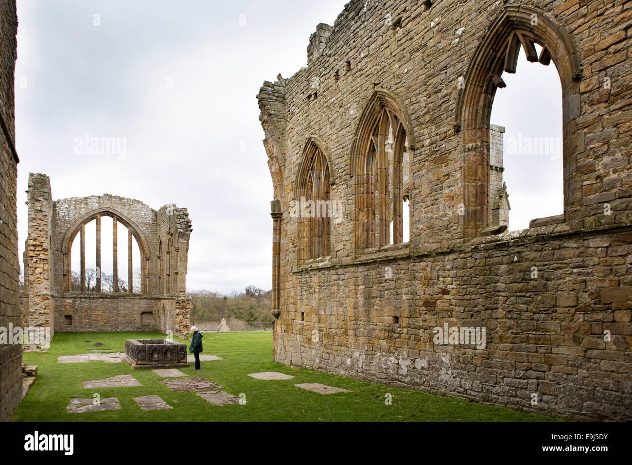 UK, Country Durham, Barnard Castle, Eggleston Abbey, visitor in ruins of 13th century church - Stock Image